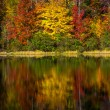 Stock Photo: Crowders Mountain State Park - North Carolina