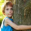Boy touch tree in forest - child care ecology — Stock Photo