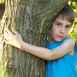 Stock Photo: Boy touch tree in forest - child care ecology