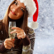 Woman christmas young beautiful smiling with santa's hat — Stock Photo #33513955