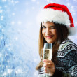 Woman christmas young beautiful smiling with santa's hat — Stock Photo #33514647