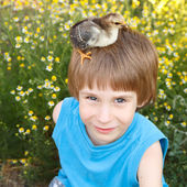 Boy cute with chiken on his head nature summerr — Stock Photo