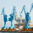 Lifting cranes in port — Foto Stock
