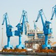 Foto Stock: Lifting cranes in port