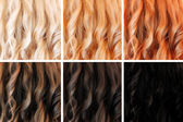 Set of hair colors — Zdjęcie stockowe