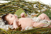 Cute baby in home nest — Stock Photo