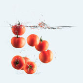 Tomatoes splash — Stock Photo