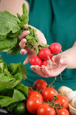 Fresh red radishes — Stock Photo