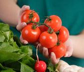 Kobieta gospodarstwa świeże pomidory — Zdjęcie stockowe
