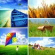 Stock Photo: Summer collage