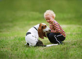 Little girl playing with a dog — Stock Photo
