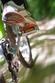 Riding a mountain bike — Stok fotoğraf