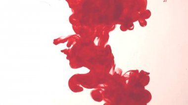 Red ink in water — Stockvideo