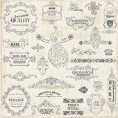 Conjunto de vectores: elementos caligráficos de diseño y decoración de la página, vi — Vector de stock