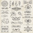 Vector Set: Calligraphic Design Elements and Page Decoration, Vi — Stock Vector #21906415