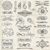 Vector Set: Calligraphic Design Elements and Page Decoration, Vi — Stockvektor