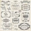 Vector Set: Calligraphic Design Elements and Page Decoration, Vi — Stock Vector #22521351