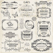 Vector Set: Calligraphic Design Elements and Page Decoration, Vi — Stock Vector
