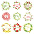 Set of Vintage Christmas and New Year Wreath — Stock Vector