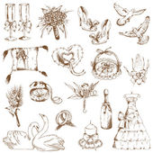 Insieme di elementi disegnati a mano di bel matrimonio - in vettoriale — Vettoriale Stock