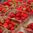 Strawberries at the market — Stock fotografie