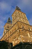 Sint servaas maastricht — Foto de Stock
