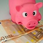 Saving Pig - 2 — Stock Photo