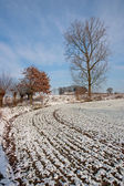 Winter Landscape - 05 — Foto Stock