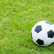 Stock Photo: Ball on grass.