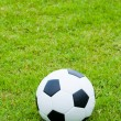 Ball on grass. - Stock Photo