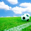 Stock Photo: Soccer ball in grass.