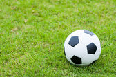 Ball on grass. — Stock Photo