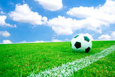 Soccer ball in grass. — Stock Photo