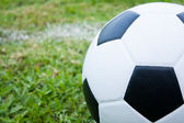 Ball in grass. — Stock Photo