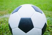 Piłka w trawie. — Zdjęcie stockowe