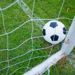 Ball in grass. — Stock Photo #13320714