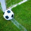 Ball in grass. — Stock Photo #13320788