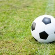 Ball in grass. - Stock Photo
