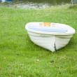 Rowing boat on the field. — Stock Photo