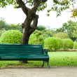 Stock Photo: Bench under tree.