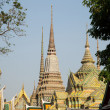 Wat Pho. — Stock Photo #20787661