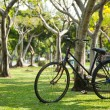 Royalty-Free Stock Photo: Old bicycle in the park.