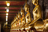 Méditation du Bouddha. — Photo