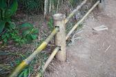 竹の柵. — ストック写真