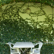 Table and chairs — Stock Photo #37806713