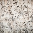 Stock Photo: Wall patterned abrasion
