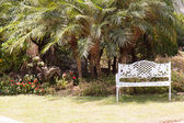 Bench on the lawn — Stock Photo