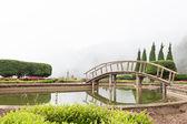 桥梁在池塘 — 图库照片