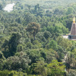 Large pagoda in the middle of the jungle — Stock Photo