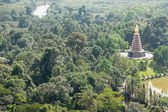 Large pagoda in the middle of the jungle — 图库照片